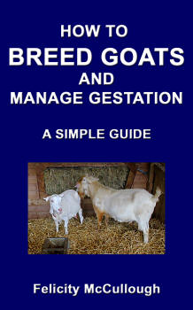 How To Breed Goats And Manage Gestation