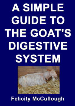 A Simple Guide To The Goat's Digestive System