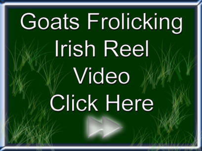 Goats Frockling